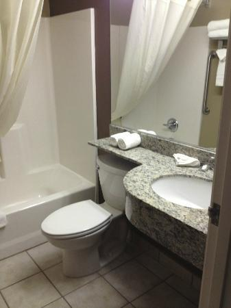 ‪‪Microtel Inn & Suites by Wyndham Austin Airport‬: bathroom‬