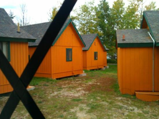 Cabins of Mackinaw: The view from the cabin.