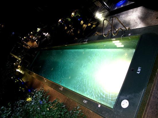 L'Hermitage Hotel: Pool view from the rooftop terrace
