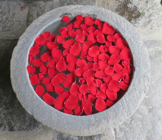 Restaurante Casa Santo Domingo: rose petals floating in an old stone basin