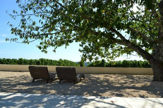 L'Autre Vie: A blend of boutique hotel & B&B charm, surrounded by Bordeaux's vineyards: Relaxing pool area
