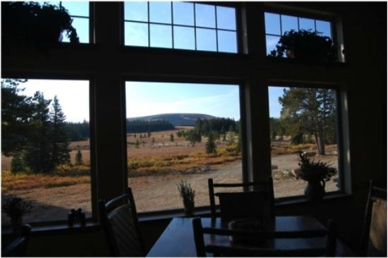 Wyoming High Country Lodge: view from main lodge