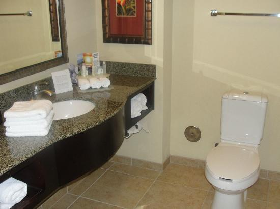 Holiday Inn Express & Suites Tampa USF-Busch Gardens: Bathroom