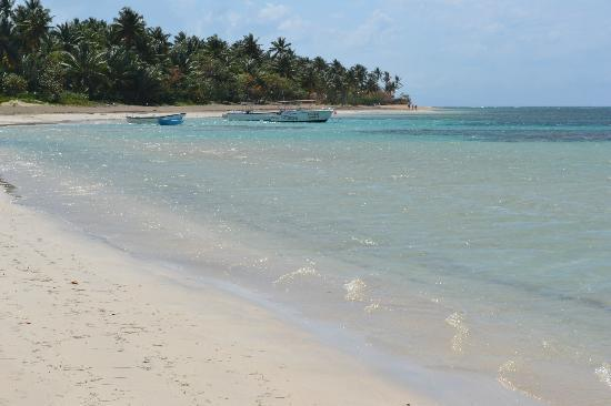 La Dolce Vita Residence : Spiaggia vicino al ristorante La Dolce Vita