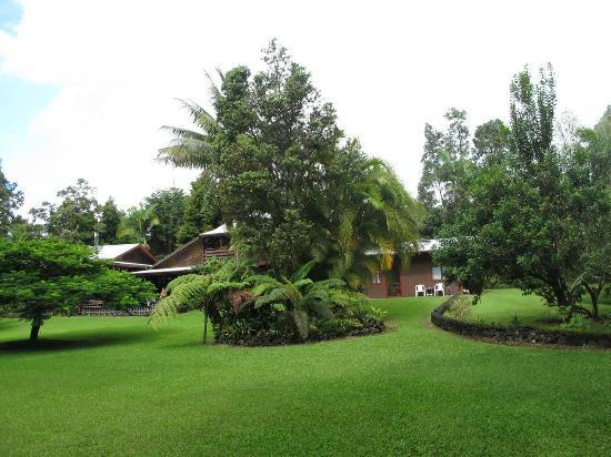 Hale Moana Bed & Breakfast: the grounds - 1