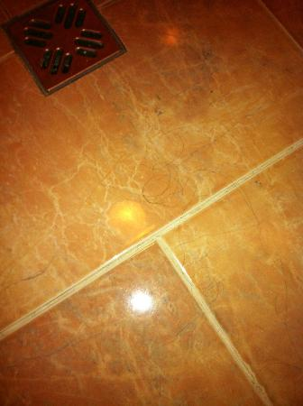Hotel Agli Artisti : pavimento del bagno