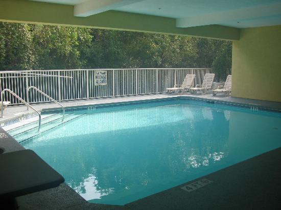 Best Western Magnolia Inn and Suites: Nice pool