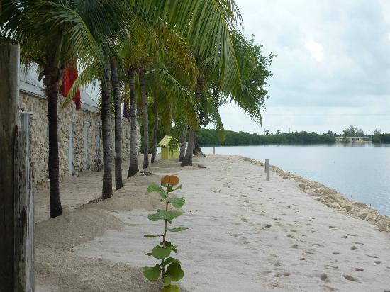 Ibis Bay Beach Resort: Beach at Ibis Bay