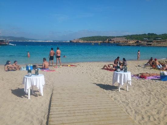 Cala Bassa Beach Club Ibiza Tripadvisor