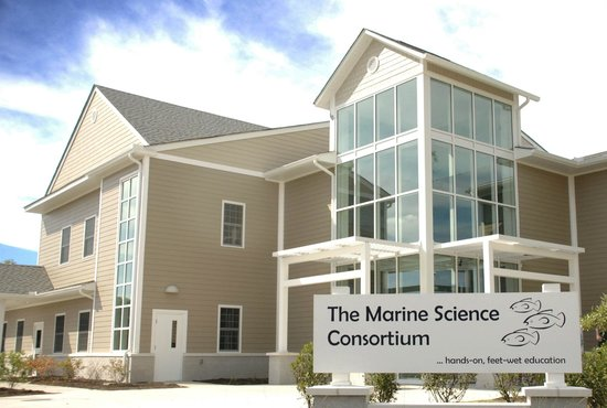 Wallops Island, VA: The Marine Science Consortium