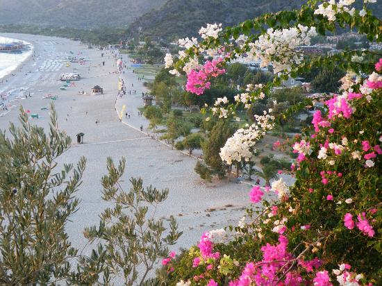 Beyaz Yunus Hotel: Beach and Olu Deniz.