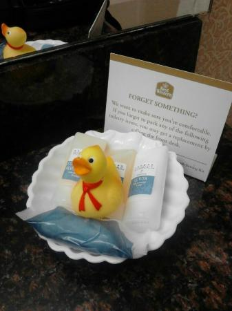 BEST WESTERN PLUS Inn at Valley View: Rubber Ducky
