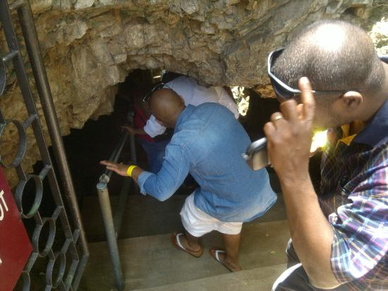 Wondercave: down the rabbit hole :) - entering the caves down a very long stair case