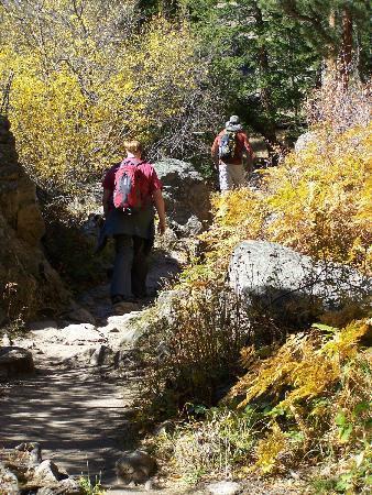 Cub Lake Trail 사진
