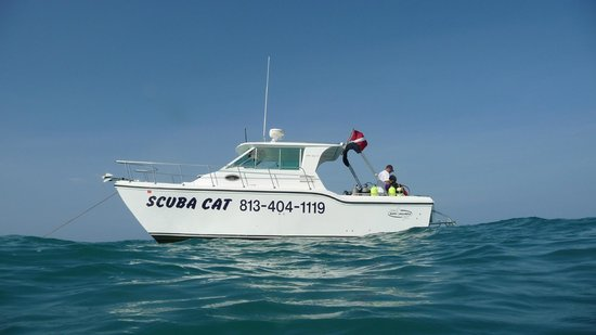Scuba Cat Charters, LLC : The Scuba Cat