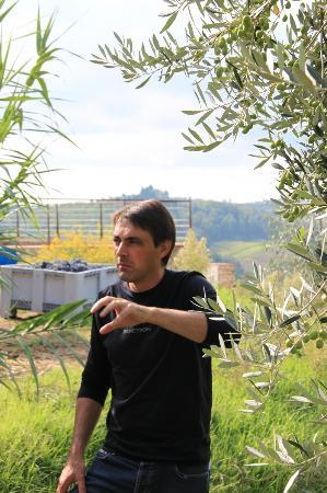Tuscan Wine Tours by Grape Tours: pierre talking olives