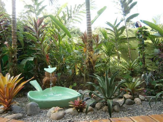 Physis Caribbean Bed & Breakfast: Garten