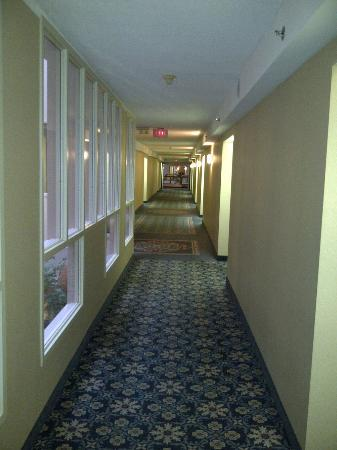 Four Points by Sheraton St. Catharines Niagara Suites: corridor