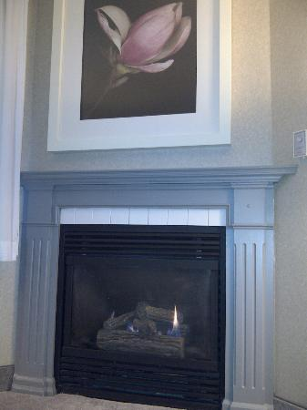 Four Points by Sheraton St. Catharines Niagara Suites: fireplace