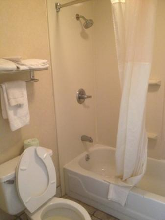 FairBridge Inn Express Natchez: bath towels very thin