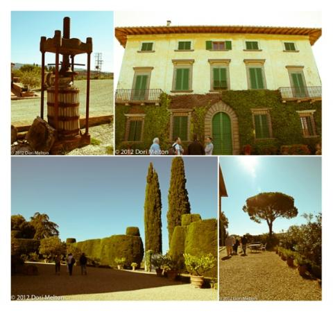 Tuscan Wine Tours with Angie: Classico Chiati Tour 2