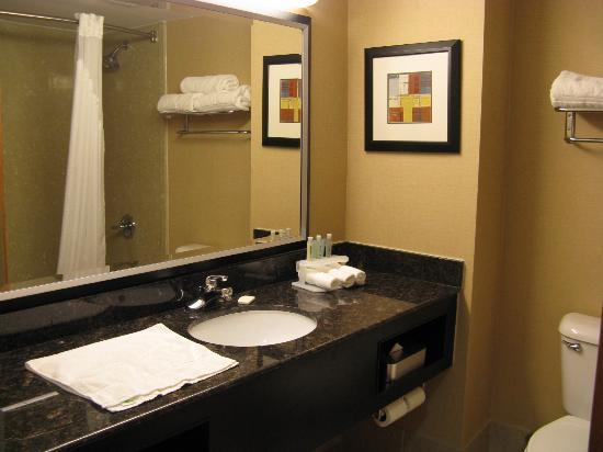 Holiday Inn Express Stone Mountain: HIE Stone Mountain bath