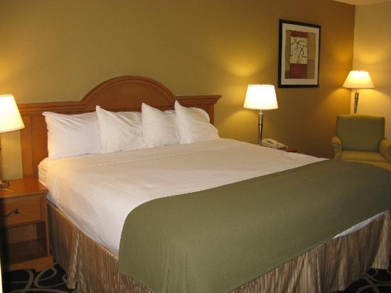Holiday Inn Express Atlanta-Stone Mountain: HIE Stone Mountain king bed