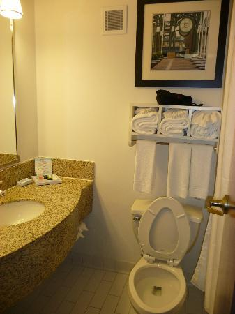 Four Points by Sheraton Memphis East: The bathroom in our room