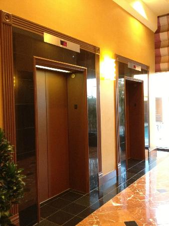 Crowne Plaza Houston River Oaks: Elevators