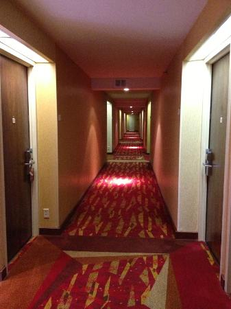 Crowne Plaza Houston River Oaks: Typical hallway. A bit dark but quite acceptable.