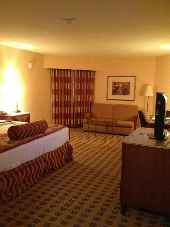 Crowne Plaza Houston River Oaks: Room is quite large