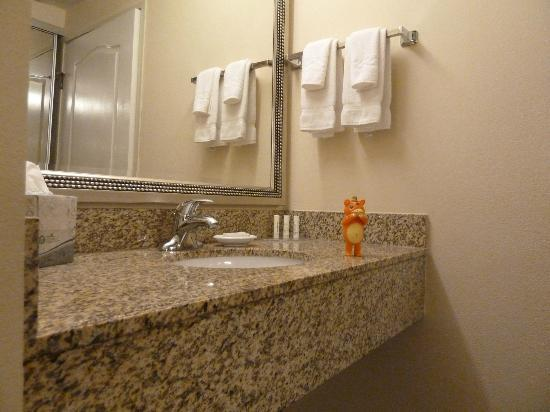 Residence Inn Santa Clarita Stevenson Ranch: Bathroom