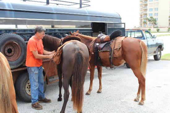 Amelia Island, FL: Saddling up the horses
