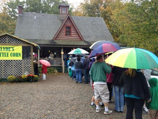 B.F. Clyde's Cider Mill: The line around back to get in! 1of 2 lines! Crazy!
