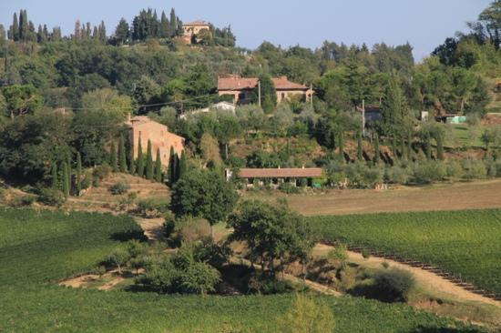Agriturismo Villa Mazzi: Close-up view of the valley below