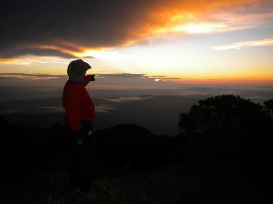 Volcan Baru National Park: Pointing to the sun just as it is rising. What a view!!