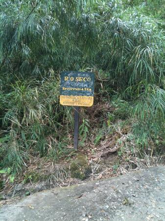 "Volcan Baru National Park: One of the many ""KM"" markers on the way up (and way down)"