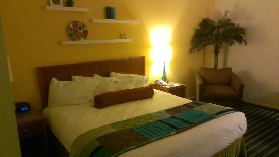 Hotel Zico: My room