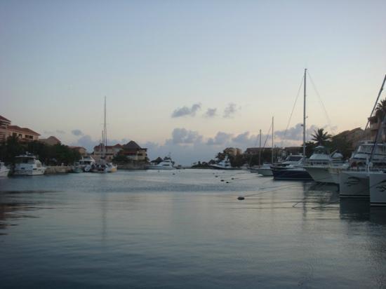 Coral Maya: Marina @ Puerto Aventuras