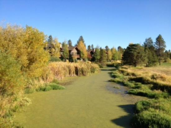 The pretty grounds of SunRiver Resort