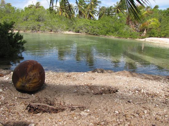 Nanihi Paradise: Südsee Idylle 