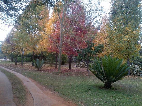 Jock of the Bushveld Chalets: The Gardens