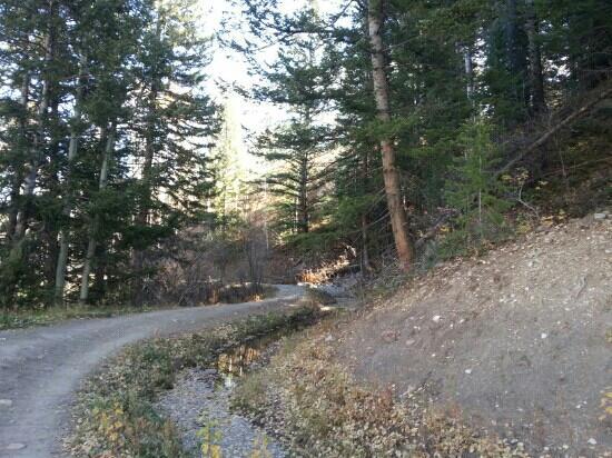 Snowmass Village Hiking Trails: Ditch Trail (Oct, 2012)