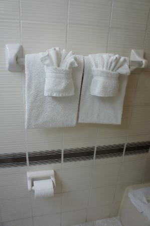 Regency Hotel Miami: Towels