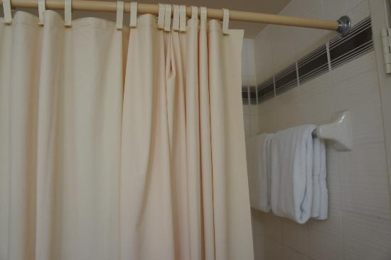 Regency Hotel Miami: Shower curtain