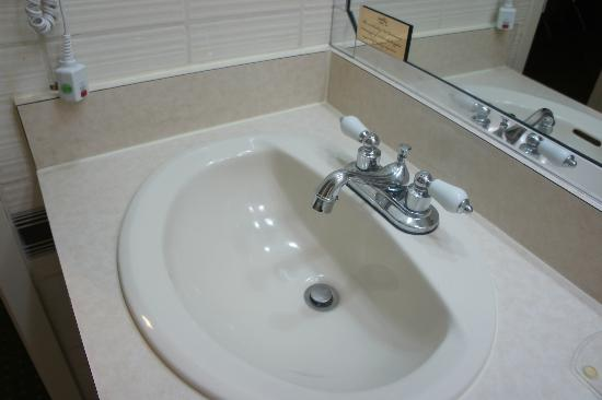 Regency Hotel Miami: Sink