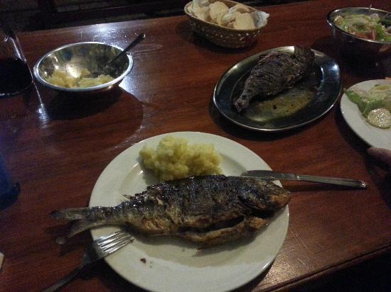 Zirje Island, Kroasia: DER FISCH - LECKER !!!