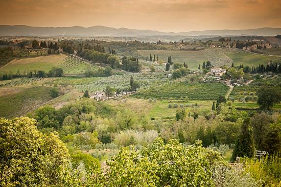 Tuscany picture of walkabout florence tours florence for Is florence in tuscany