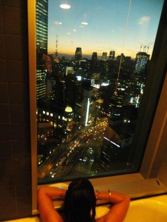 Mitsui Garden Hotel Ginza Premier: view from bathroom