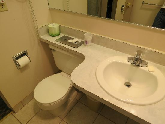 Richmond Inn & Suites: Restroom